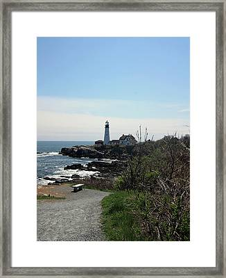 Along The Path Framed Print