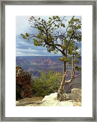 Framed Print featuring the photograph Along The Rim by Gordon Beck