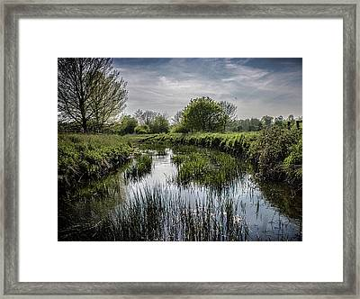 Along The River Bank Framed Print