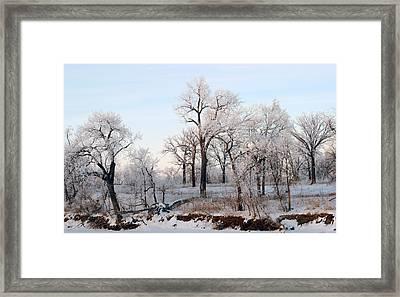 Along The River Framed Print by Steve Augustin