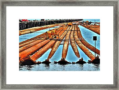 Along The River Framed Print by William Jones