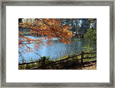 Along The Road Framed Print