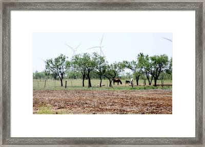 Along The Road Framed Print by Jill Smith