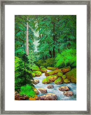Along  The  Rogue Framed Print by Shasta Eone