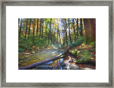 Framed Print featuring the digital art Along The Trail In Georgia by Sharon Batdorf