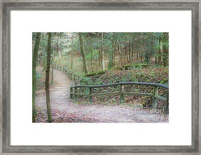 Along The Trail, Life Happens Framed Print