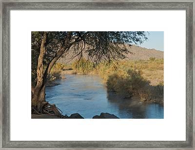 Along The Verde River 9 Framed Print by Susan Heller