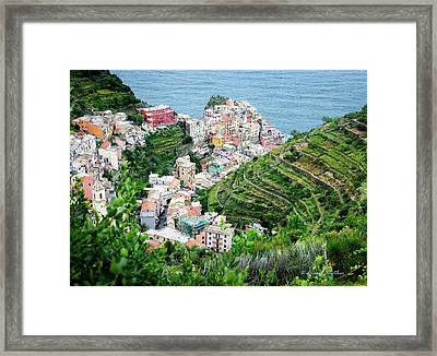 Along The Via Del Amore Framed Print