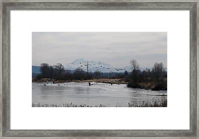 Alouette River Framed Print