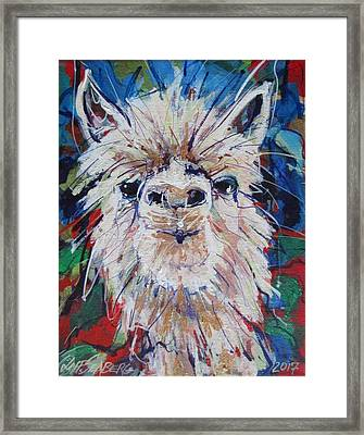 Alpaca Crazed Framed Print