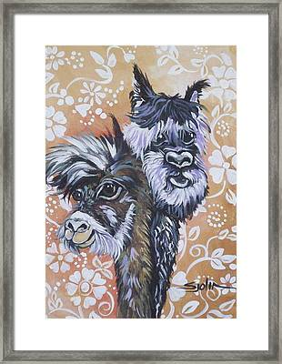 Alpaca Do-bee  Brothers Framed Print