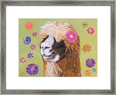 Alpaca Hippie Framed Print by Janet Greer Sammons