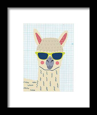 Alpaca Framed Prints