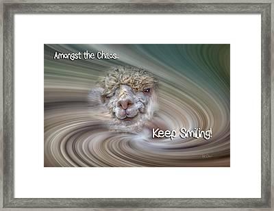 Alpaca Smile Framed Print