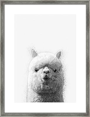 Alpaca  Framed Print by Taylan Apukovska