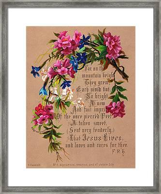 Alpenrose Gentian And Saint John's Lily Framed Print by Helga von Cramm