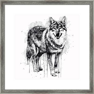 Alpha Wolf Black And White Framed Print by Marian Voicu