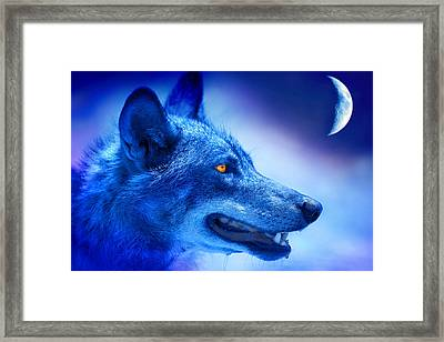 Alpha Wolf Framed Print by Mal Bray