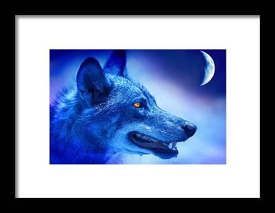 Alpha Wolf Framed Prints