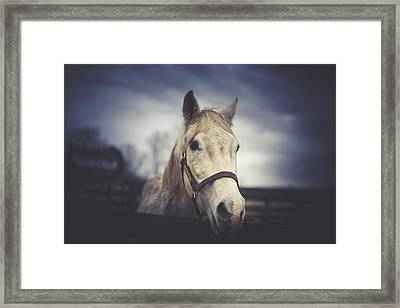 Framed Print featuring the photograph Alphabet Soup by Shane Holsclaw