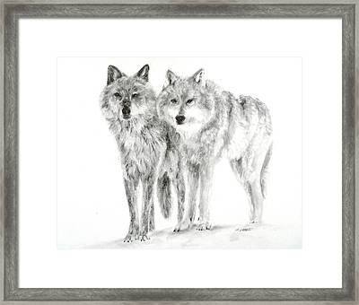 Framed Print featuring the drawing Alphas by Meagan  Visser