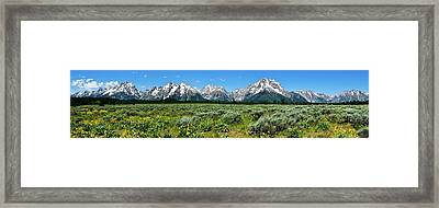 Alpine Meadow Teton Panorama II Framed Print by Greg Norrell