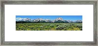 Alpine Meadow Teton Panorama II Framed Print by Greg Norrell