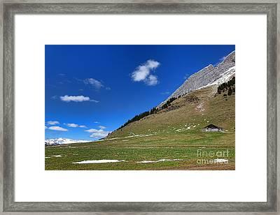 Alpine Spring Framed Print by Olivier Le Queinec