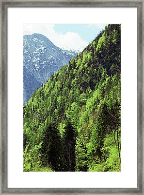 Alpine View In Green Framed Print by Brooke T Ryan