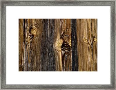 Alpine Wood Framed Print by Frank Tschakert
