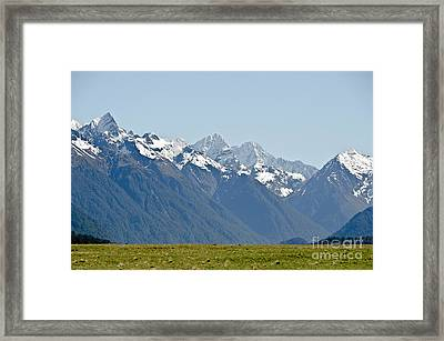 Alps And Valleys Of New Zealand. Lord  Of The Ring Scenery Framed Print by Yurix Sardinelly
