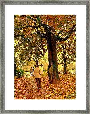 Already Autumn Framed Print
