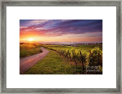 Alsace Dawn Framed Print by Brian Jannsen