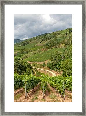 Alsatian Hills Framed Print by W Chris Fooshee