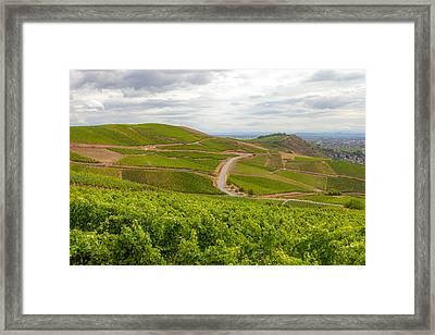 Alsatian Vineyards Framed Print by W Chris Fooshee