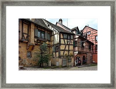 Alsation Architecture Framed Print
