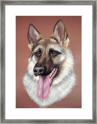 Alsation2 Framed Print by Mary Mayes