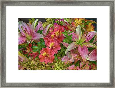 Alstrom And Lilies Framed Print