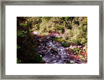 Altered States At The Park Framed Print by David Lane
