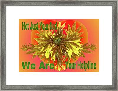 Alternative Medicine Framed Print by Mike Breau