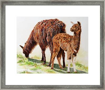 Altiplano Natives Framed Print by Monica Carrell