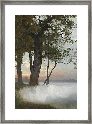 Alvalek Framed Print by August Malmstrom