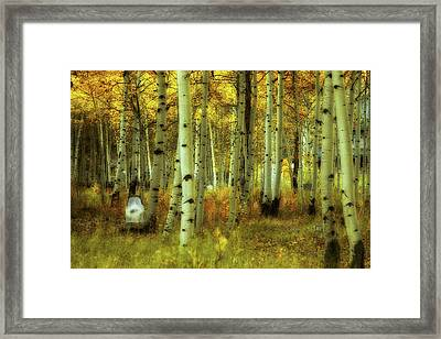 Alvarado Autumn 1 Framed Print by Marie Leslie