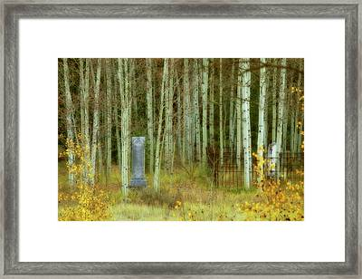 Framed Print featuring the photograph Alvarado Cemetery 41 by Marie Leslie