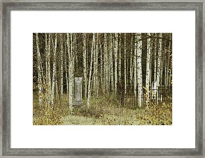 Framed Print featuring the photograph Alvarado Cemetery 42 by Marie Leslie