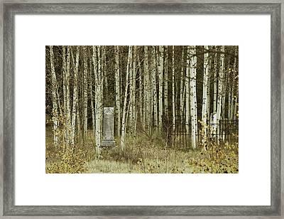 Alvarado Cemetery 42 Framed Print