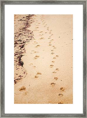 Always Beside You Framed Print