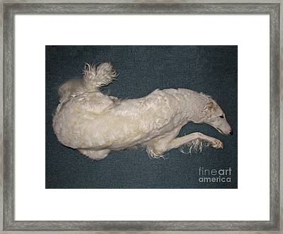 Always In Motion Framed Print by Deborah Johnson