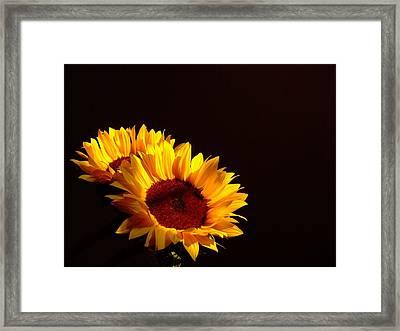 Always Into The Sun Framed Print by Juana Maria Garcia-Domenech