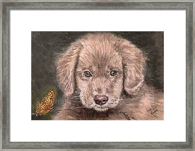 Irish Setter Puppy Dog And Orange Butterfly Framed Print by Remy Francis